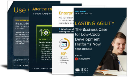 Lasting agility: the business case for low-code