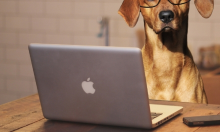 Animal owners count on technology to enhance pet management